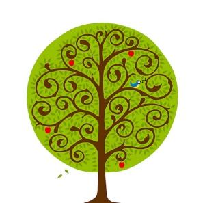 Tumtum-Tree